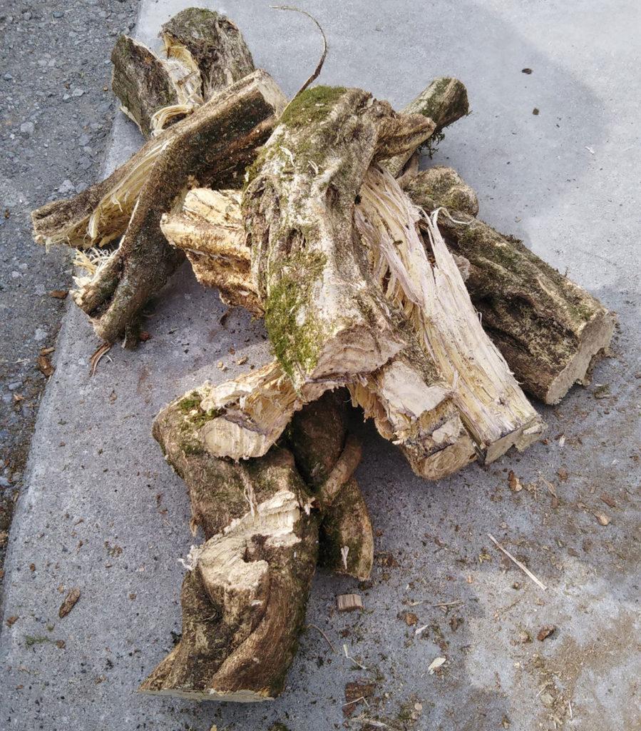 かずらという植物です。薪には向いていないと思いました