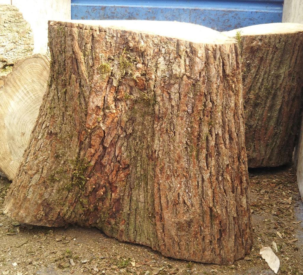 ナラの木の丸太です。これから薪割り機で割って薪にします。